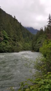 Nooksack Creek from Snowater Resort - Pacific Northwest